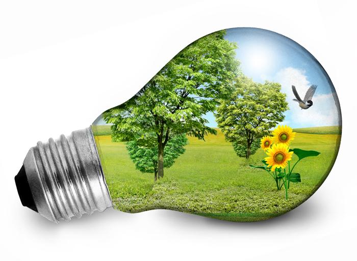 Galaicontrol participa no día mundial da eficiencia enerxética